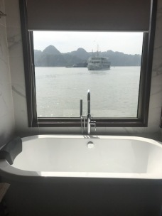 View from the boat - bathroom - Doris Cruise